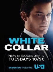 White Collar.png