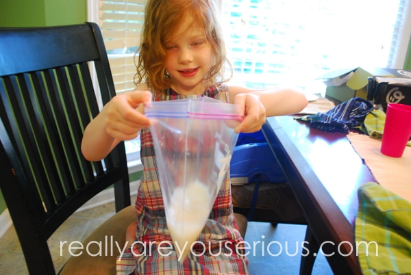 3 ingredient ice cream in a bag