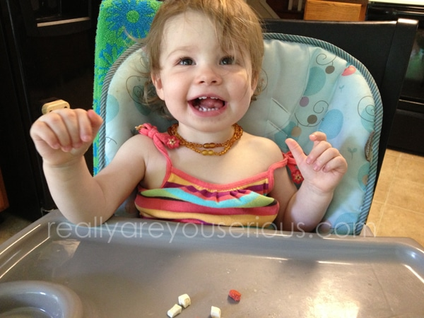 Sprout Toddler Snacks Review and Giveaway
