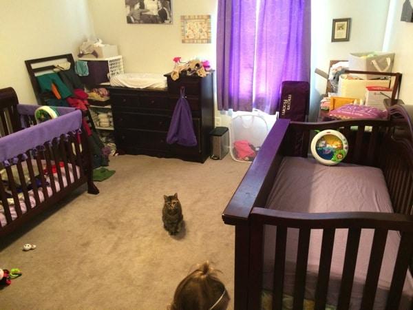Naturepedic crib mattress review