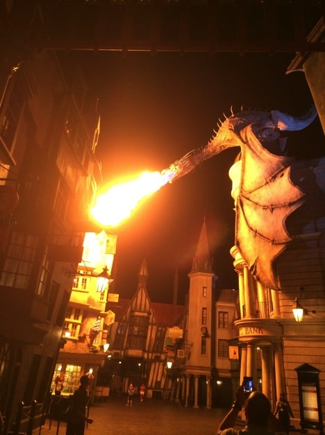 6 Reasons to Visit Diagon Alley (Even The Non-Harry Potter Lover)