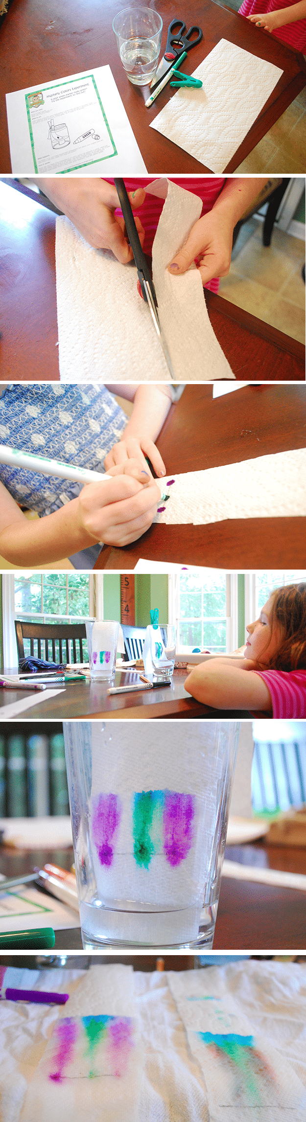 science for kids: paper chromatography for kids