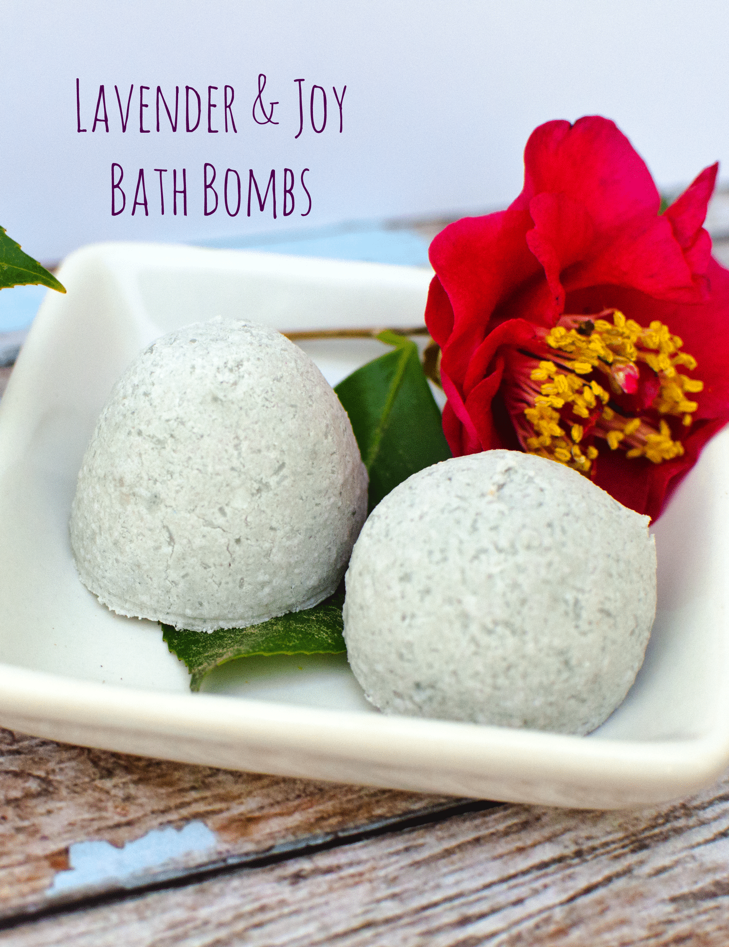 Lavender and Joy Fragrant Fizzie Bath Bombs for Mother's Day