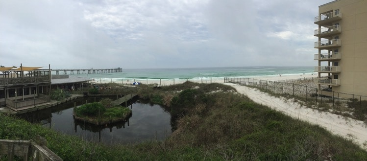 gulfarium fort walton beach florida emerald coast