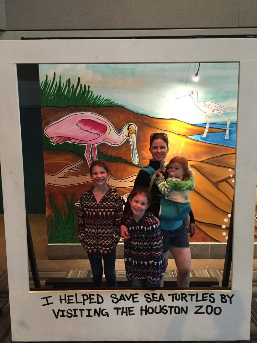 A fun Houston Outing to The Houston Zoo | Mommy and Me Monday | 314th ed