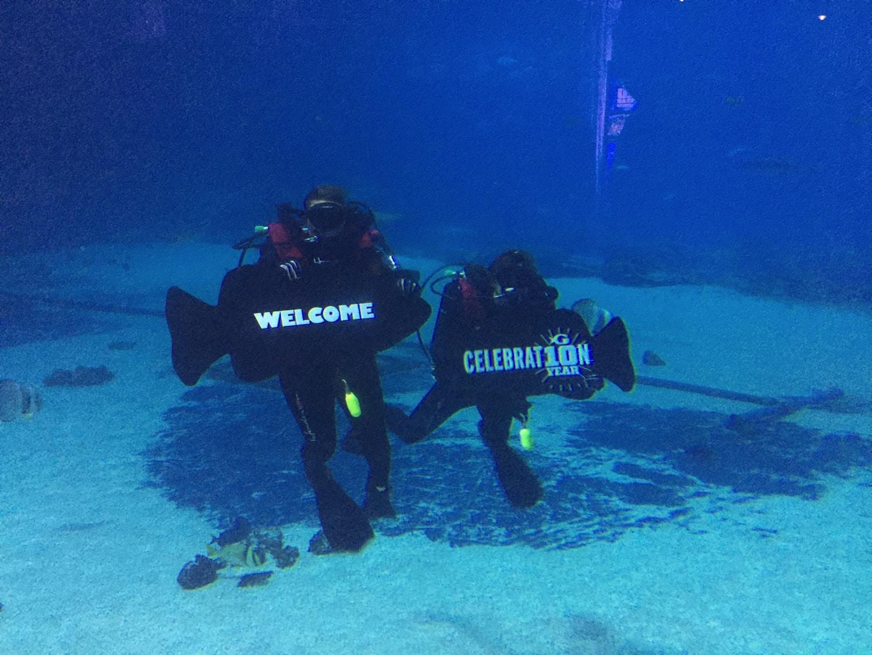 10th anniversary geogia aquarium