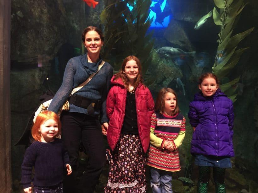 Festival of the SEAson at The Georgia Aquarium | Mommy and Me Monday | 356th ed