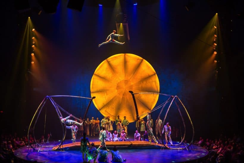 13 Reasons You Should Not Miss Cirque du Soleil LUZIA