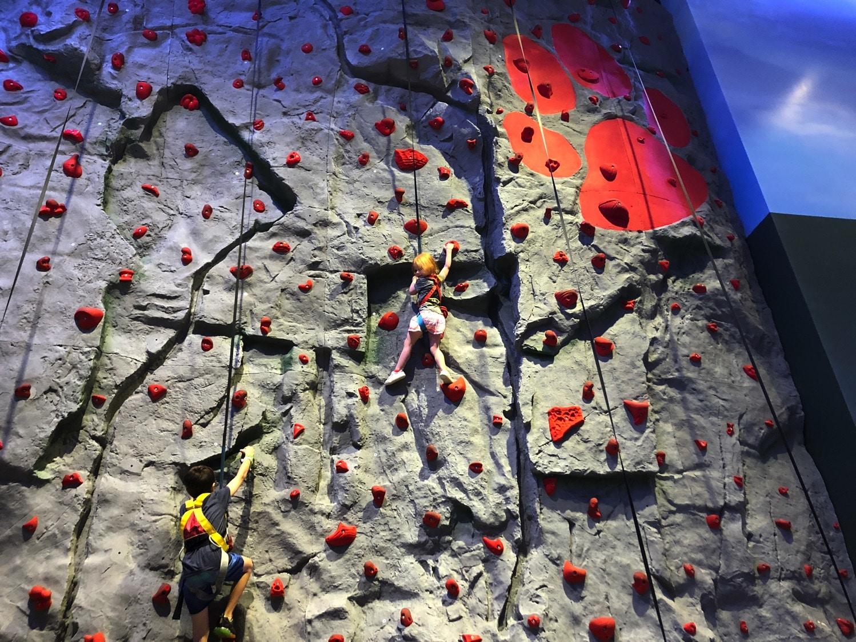 Rustic Ridge Climbing Wall