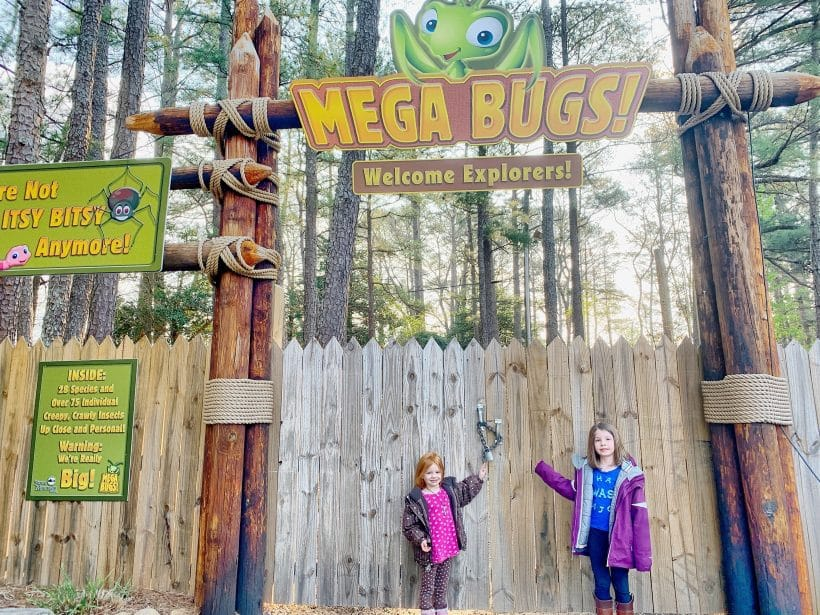 MEGABUGS! at Stone Mountain Park with video