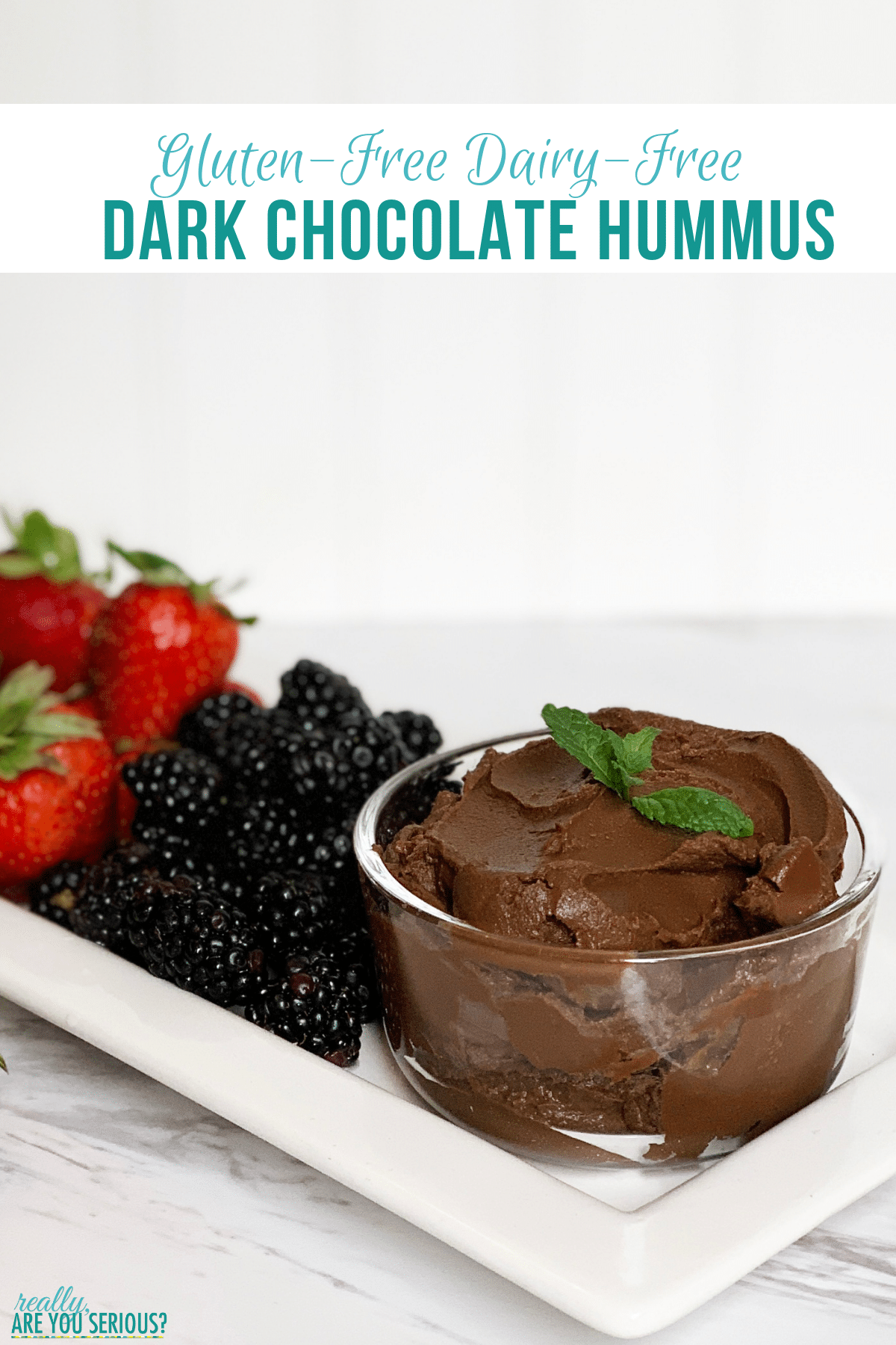 Gluten Free Dairy Free Dark Chocolate Dessert Hummus