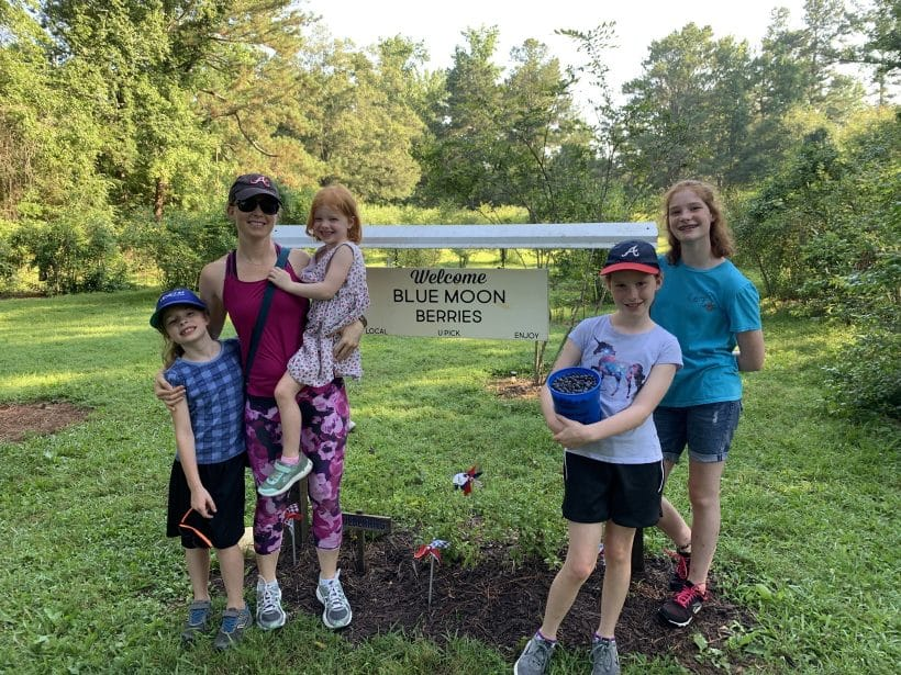 Blueberry picking | Mommy and Me Monday | 491st