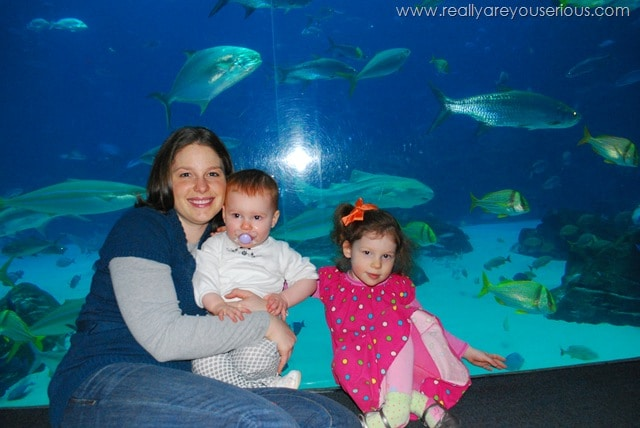 First Mommy and Me Monday at the Aquarium
