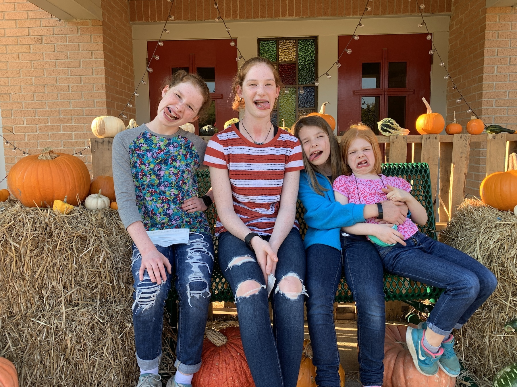 pumpkin patch 2020 silly faces